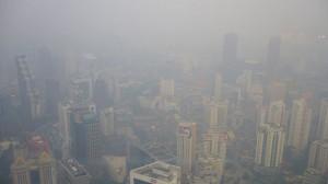 Indonesia climate pledge hazy on deforestation - analysts