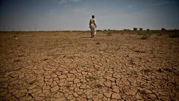 UN land restoration pact boosts Paris climate summit