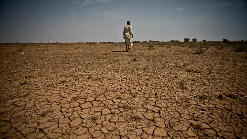 Arid soils in Mauritania, crops have failed and the region faces a major food crisis. Over 700,000 people are affected in Mauritania and 12 million across West Africa. ESP Tierra árida en Mauritania. Las cosechas han sido deficitarias y la región se encuentra haciendo frente a una grave crisis alimentaria. Más de 700,000 personas están en riesgo en Mauritania y 12 millones en el Sahel. Fr: Sols arides en Mauritanie. Les récoltes n'ont rien donné et la région est confrontée à une crise alimentaire majeure. Plus de 700 000 personnes sont menacées en Mauritanie et 12 millions dans l'ensemble du Sahel.