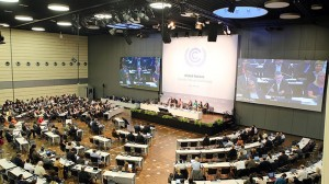 UN climate text swells as G77 flexes muscles in Bonn