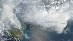 Indonesia urged to declare national disaster as haze worsens