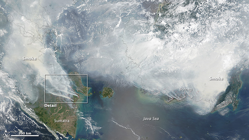 Thick smoke blankets the islands of Borneo and Sumatra, which has led to air quality and public health warnings in Indonesia and neighbours Malaysia, Singapore and Thailand (credit: NASA Earth Observatory/Adam Voiland)