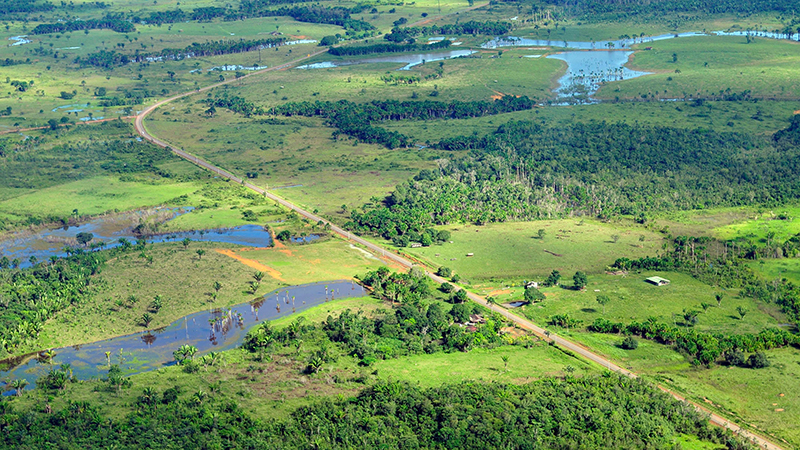 Amazon - Brazil, 2011. Aerial view of the Amazon Rainforest, near Manaus, the capital of the Brazilian state of Amazonas. Brazil. Photo by Neil Palmer/CIAT for Center for International Forestry Research (CIFOR). ©Neil Palmer/CIAT