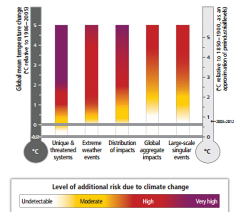 Warming up to 1.5C will lead to rising sea levels and devastate some ecosystems says the UN's climate science panel (Pic: IPCC WG-II, Summary for Policymakers)