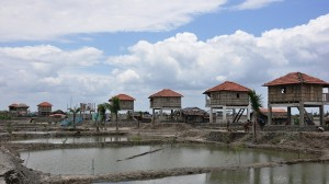 Rich countries urged to pay 'fair share' of climate adaptation finance