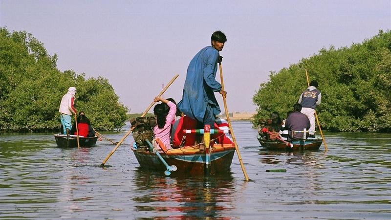 Mangroves provide a natural buffer against cyclones (Flickr/Hemanshu Kumar)