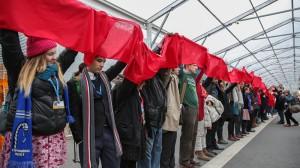 COP21: NGOs react to UN Paris climate deal