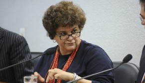 Brazil ex-environment minister slams 'land grabbing' plan