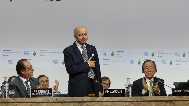 COP president Laurent Fabius speaking ahead of release of final Paris agreement (Pic: IISD/Kiara Worth)