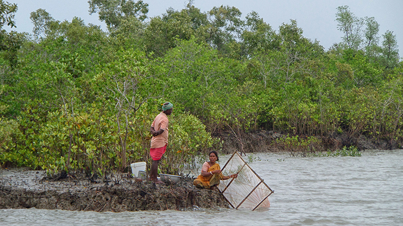A couple fishing in the mangrove for their livelihood in Sundarbans (Flickr/ Kingshuk Mondal)