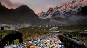Planet detox: Welcome to the frontline of the war on waste