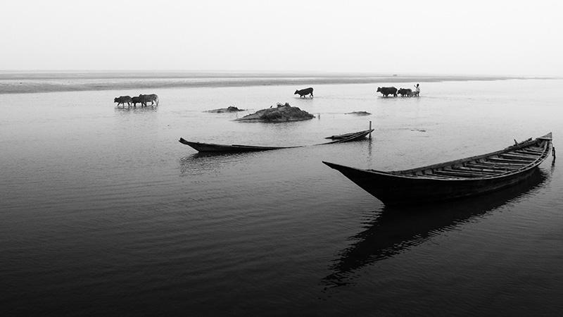 (Pic: Enamur Reza/Flickr)