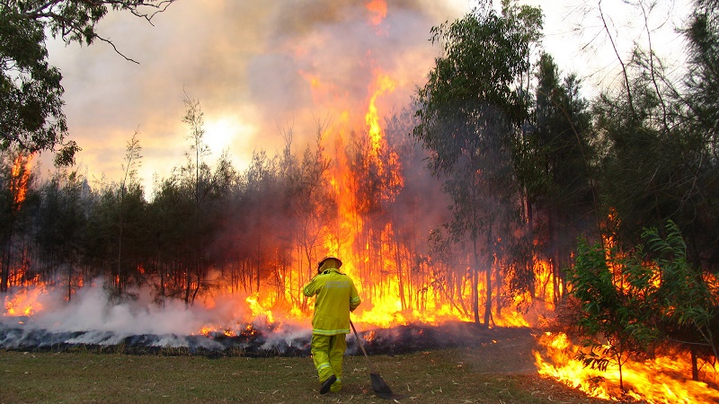 Australia is vulnerable to global warming impacts like bush fires (Flickr/bertknot)