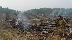100 'fire-free villages' take on Indonesia's haze hazard