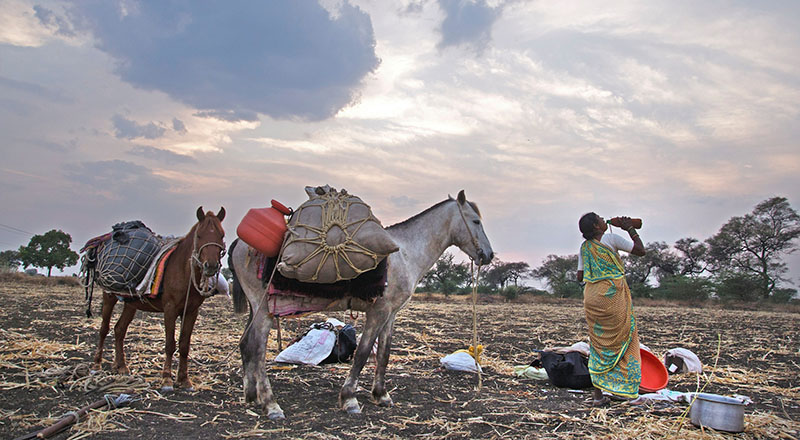 Maharashtra has declared 15747 villages in 21 districts as drought affected (© Subrata Biswas / Greenpeace)
