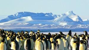 Antarctica geoengineering idea flawed say scientists