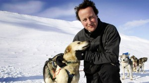 Still time to salvage husky-hugging legacy, Cameron told