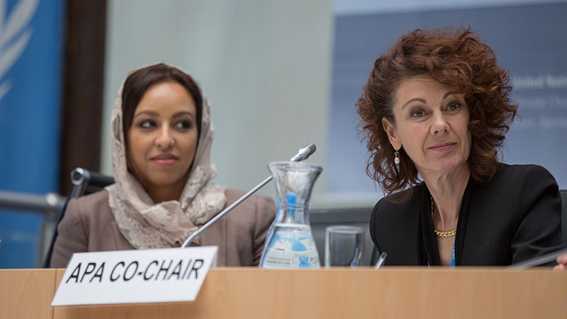 Sarah Bashaan and Jo Tyndall, chairs of the 'APA' set of talks on the Paris Agreement (Pic: UNFCCC/Flickr)