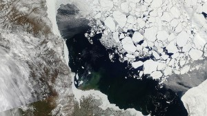 Arctic sea ice hits new record low