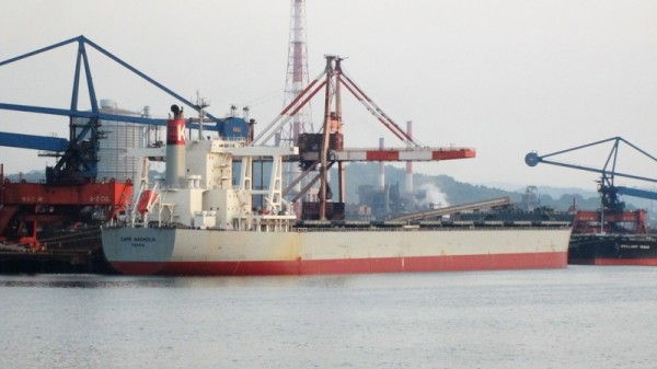 Why ship owners see little point in greener vessels
