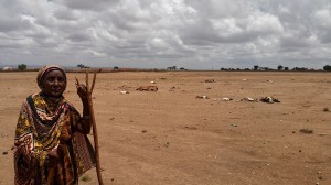 African climate plans in doubt amid slow aid flows