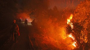 Climate change blamed for doubling of US forest fires