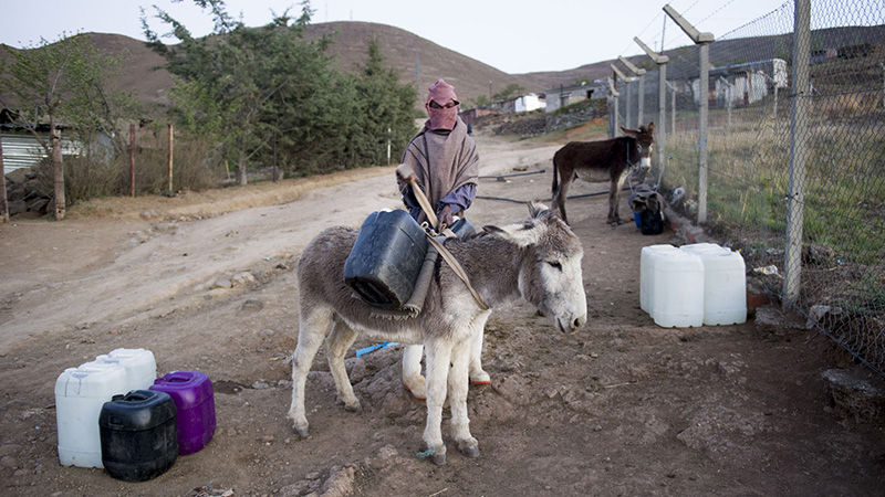 A boy collects water at dusk which he places on his donkey to take home - there is only one tap in the entire village of Katse (Pic: Delwyn Verasamy)