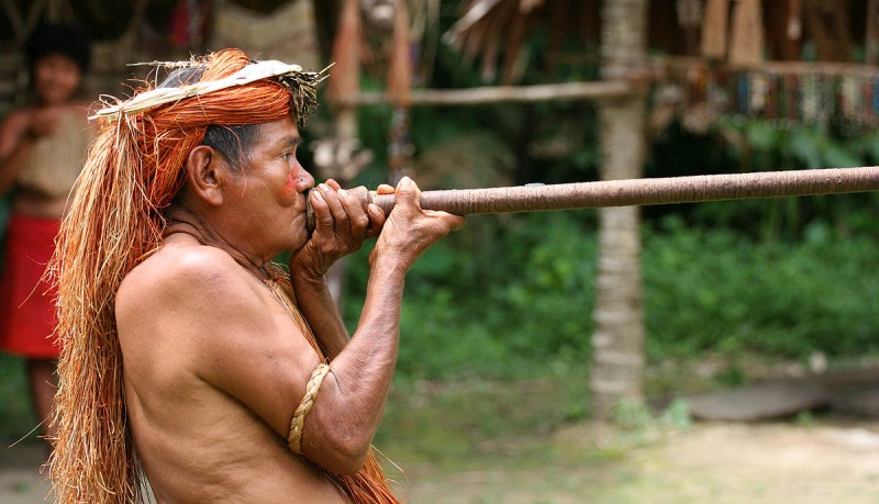 The Yagua tribe lands lie in the Colombian and Peruvian Amazon.