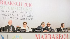 India's silence on Trump noted at Marrakech climate talks