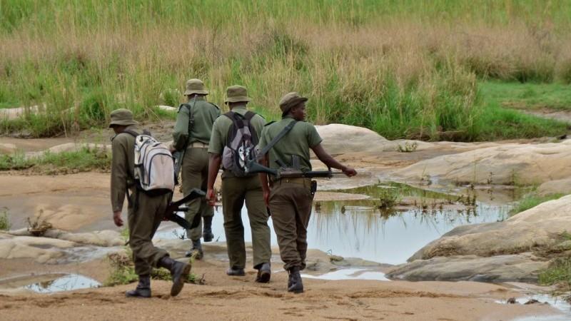 Rangers on patrol (Pic: Flickr/Bernard Dupont)