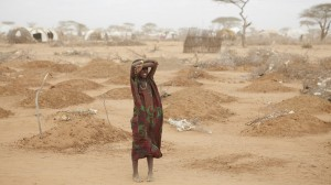 Africa gears up for first-of-a-kind climate impact study