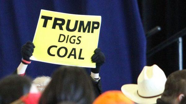 Executive disorder: Trump's climate policies bid goodbye to reality