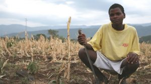 African countries urged to prepare for rise in extreme El Niño events