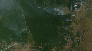 Brazil's carbon emissions rose 8.9% in 2016, despite recession