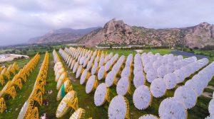 India raises $400m green bond to fund renewables drive