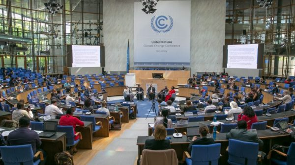 Leading climate lawyer speaks out over sexual harassment at UN talks