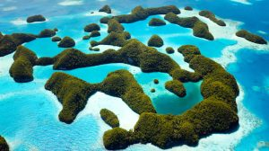 Video: Palau to raise Adani coal mine with Australia