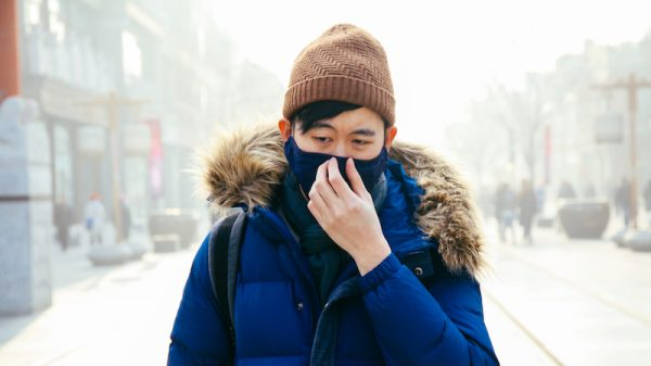 No heating at -6C: Poor bear brunt of Beijing's air cleanup