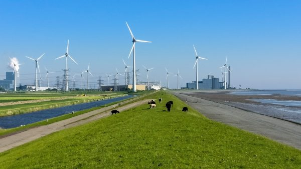 Netherlands climate lawsuit goes to court of appeals