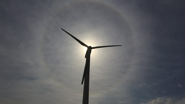 German renewables meet 100% of power demand for second time ever