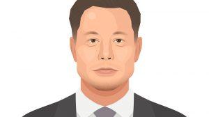 Elon Musk's disaster capitalism