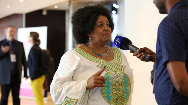 Edna Molewa, who fought for unity on climate change, dies aged 61