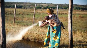 All-woman fishing co-op builds climate resilience in Zambia