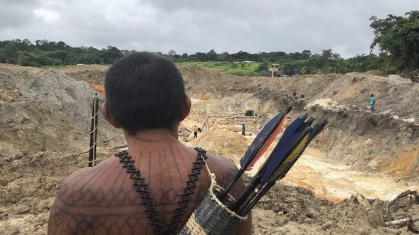 Podcast: Reporting from the Amazon under Bolsonaro