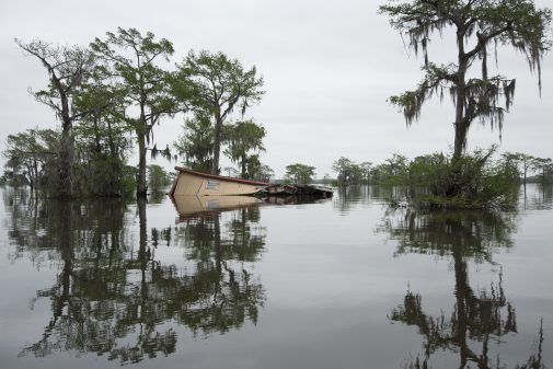 Life adapts to Louisiana's disappearing coast