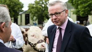 New UK green watchdog to be based on EU system, says Gove
