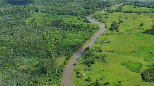 Bolsonaro shrugs off German aid cuts, as deforestation surges
