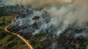 G7 countries offer $20 million emergency aid to fight Amazon wildfires