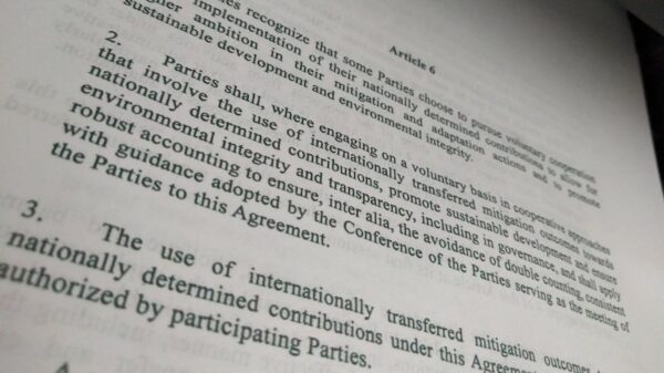 What is Article 6? The issue climate negotiators cannot agree