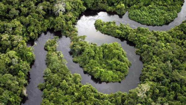 Carbon sinks will lose impact the more humans emit